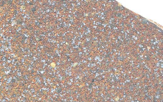magnified sahara 98034
