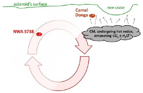 standby for camel donga nodule formation diagram